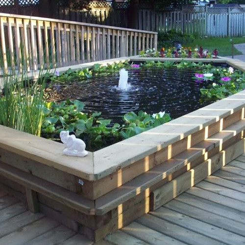 Pond coatings for koi retention and gardens seal tite for Wooden koi pool